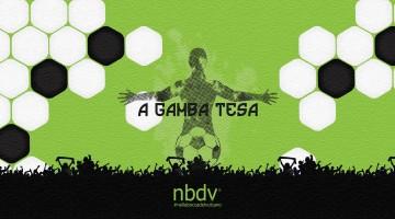 A Gamba Tesa- NBDV